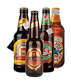 Ale Bier Paket (1550ml Set)